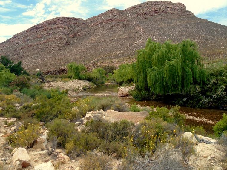 cederbergwater