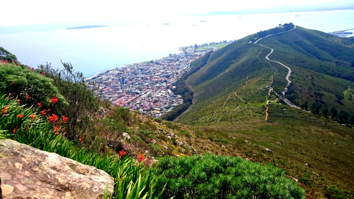Hiking Lion's Head, Cape Town