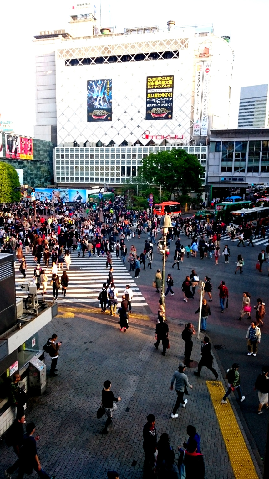 Shibuya Crossing Scramble view from Starbucks