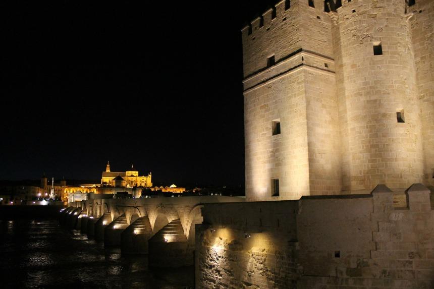 Roman Bridge and Mezquita at night