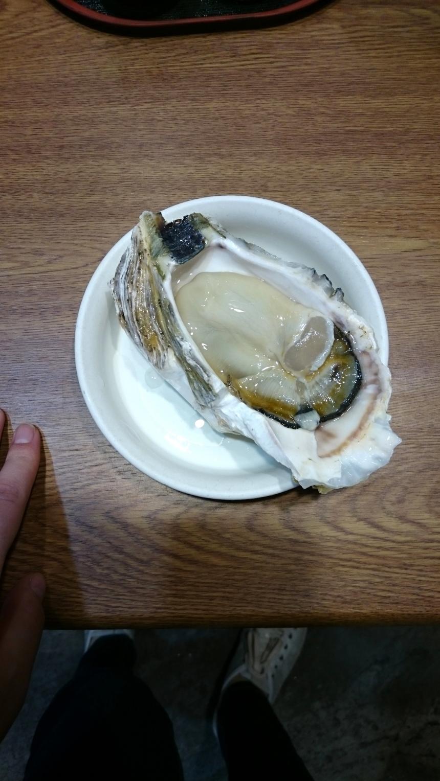 Fresh oysters at Kanazawa Omicho Market