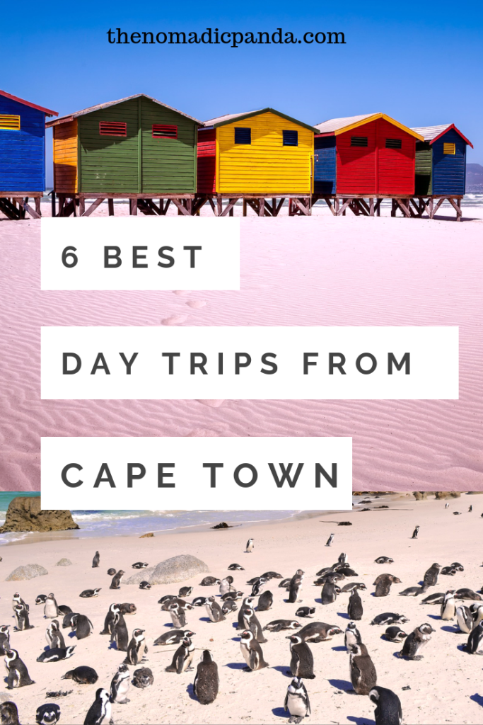 6 Best Day Trips to take from Cape Town